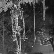 2006_hanging_skeleton_bw